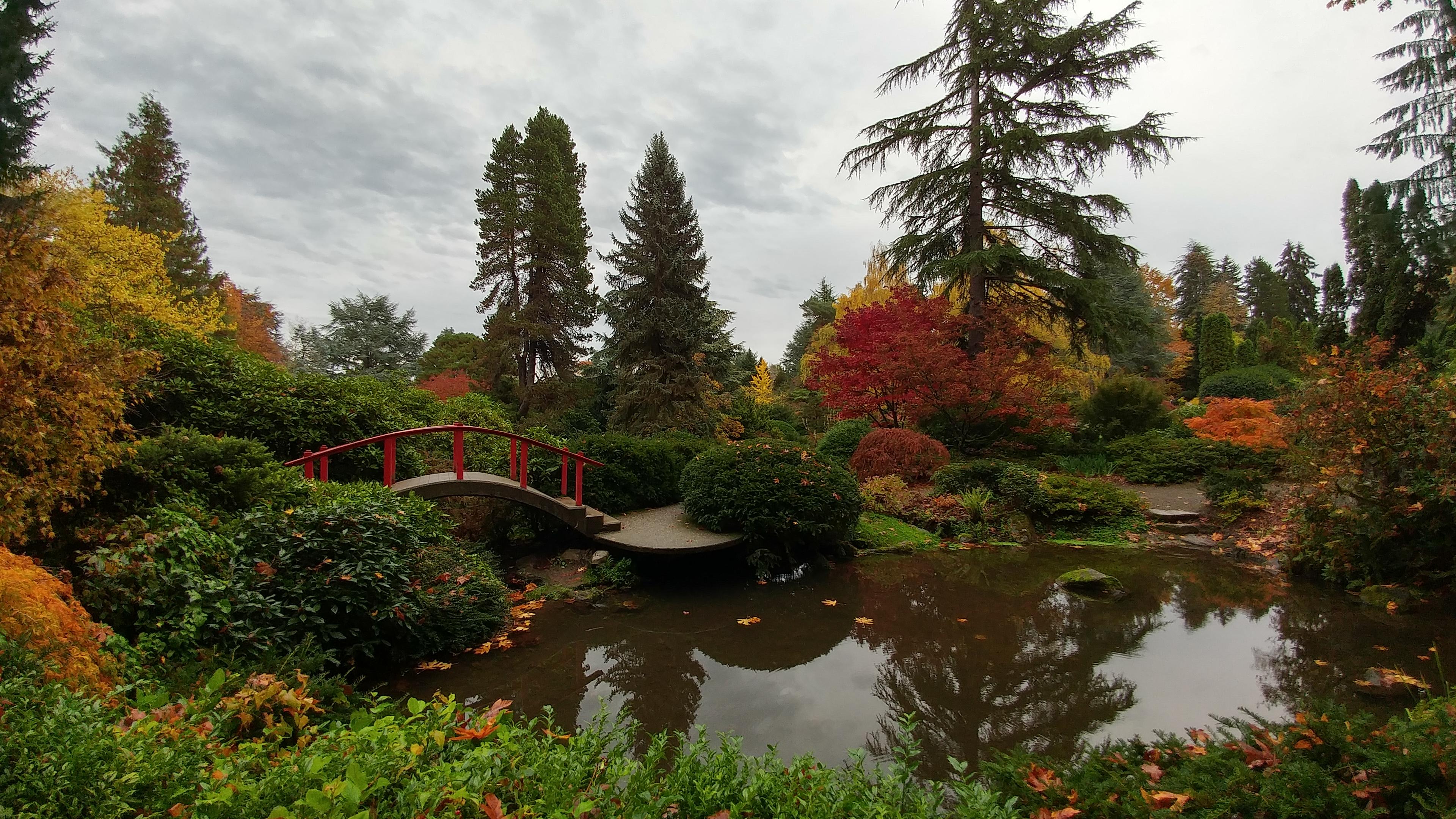 Photo: Seattle\'s Kubota Garden - Greg Bem