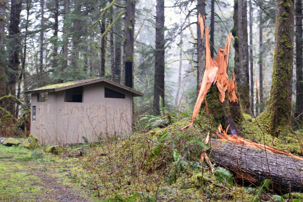 wa-hiking-feb-15-2016-DSC_0149