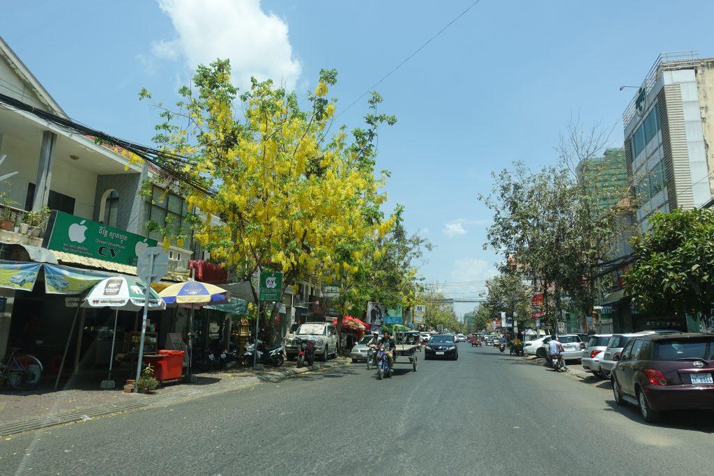 cambodia0317pt2DSC00695