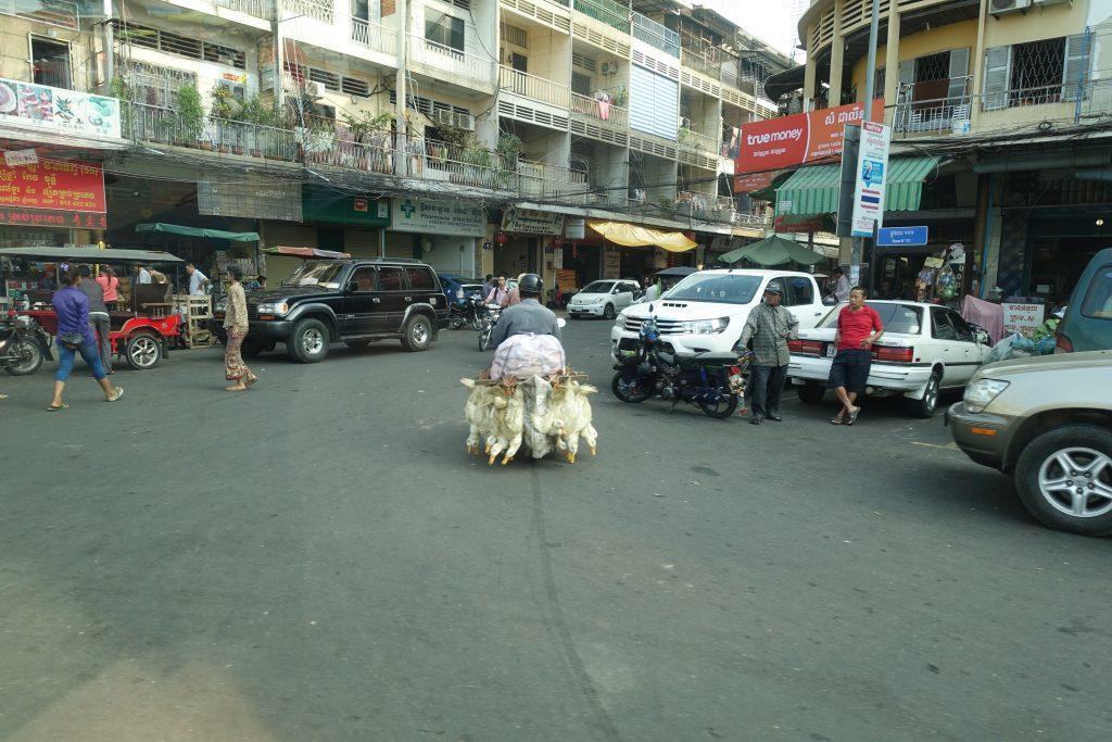 cambodia0317pt3DSC00780