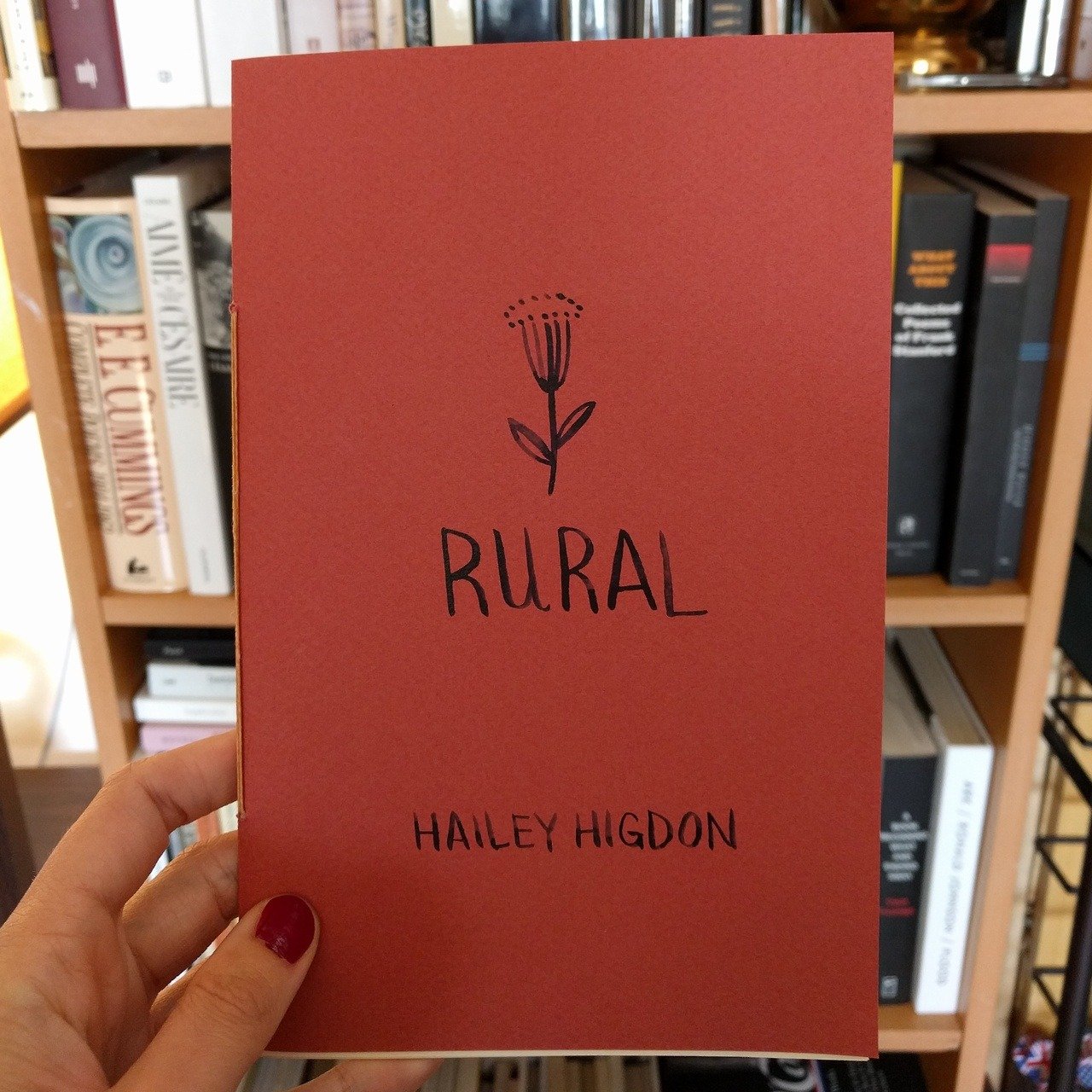 hailey higdon rural