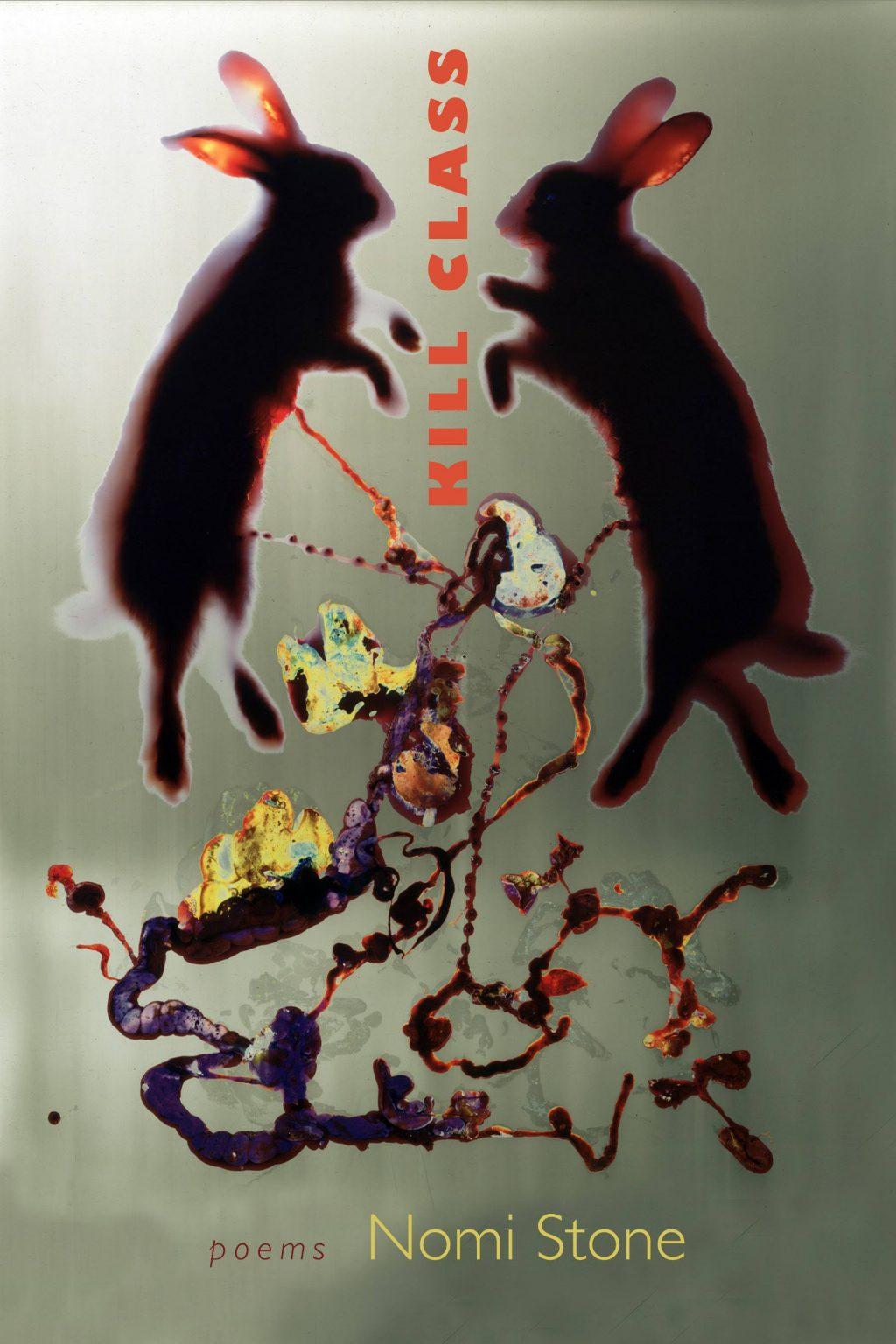 kill class - nomi stone book cover