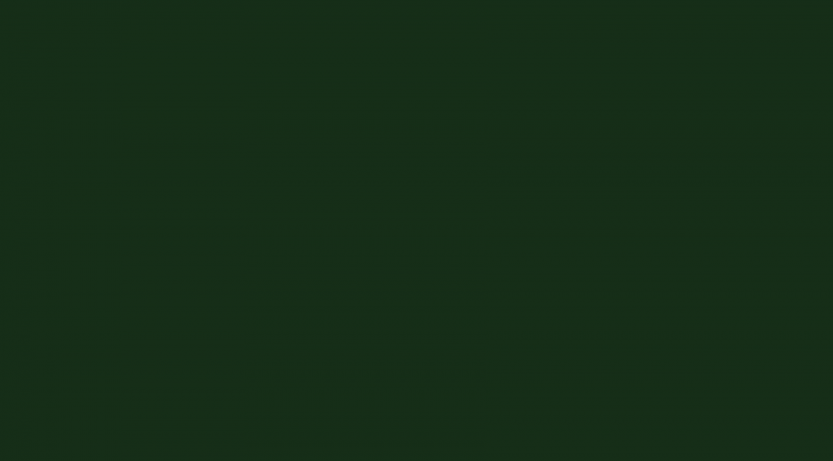 A solid green square